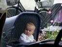Hungry Eyes for Scandinavian Baby Buggies
