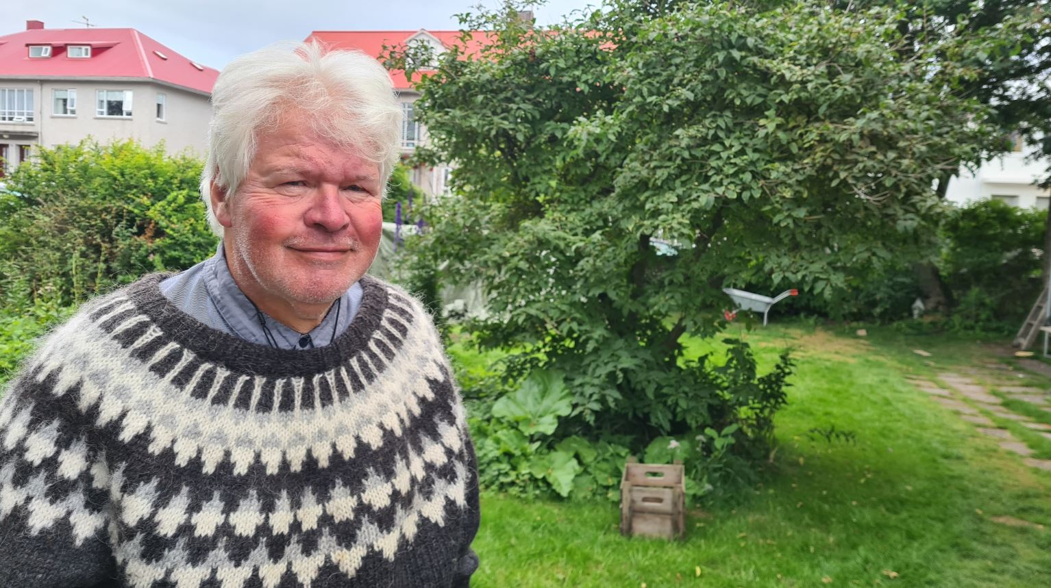 Iceland: Trust in politicians almost regained